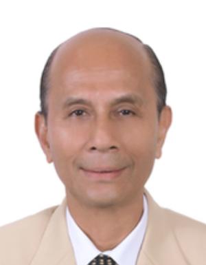 Ferdinand Victor Rodrigues