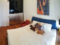 apartment for rent 1 bedrooms 247785 d10 sgla49783020