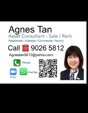 Ms. Agnes Tan