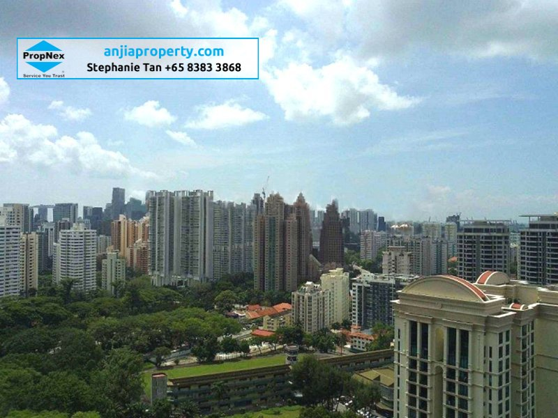 condominium for rent 3 bedrooms 249587 d10 sgla89851021