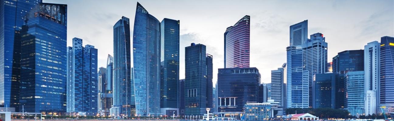 Singapore and International properties