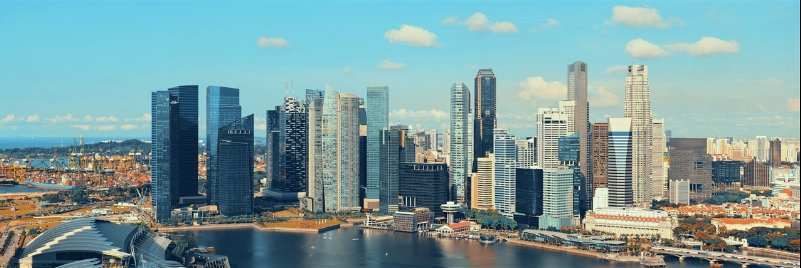 New private home sales rebound in Nov