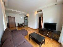 apartment for rent 3 bedrooms 238250 d09 sgla57949893