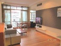 apartment for rent 2 bedrooms 238250 d09 sgla79801377