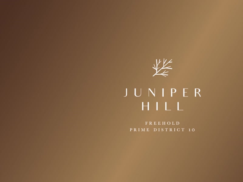 Juniper Hill - Fly Through