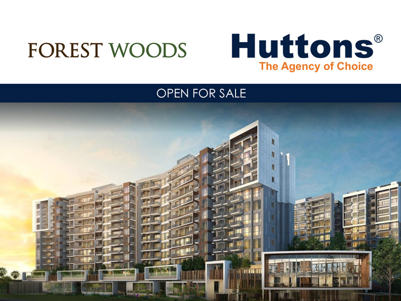 forest woods 536494 sglp86270751